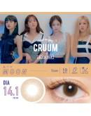 T-Garden/CRUUM/日拋10片裝/月光褐 Moon