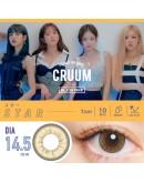 T-Garden/CRUUM/日拋10片裝/星辰褐 Star