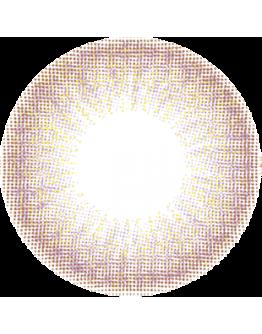 安儷/L'AMOUR小直徑/日拋10片裝/粉金