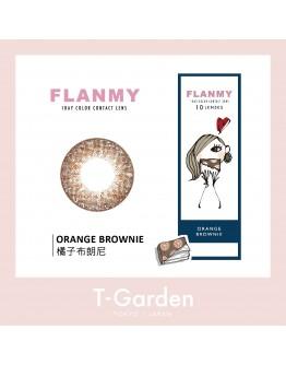 T-Garden/FLANMY/日拋10片裝/橘子布朗尼