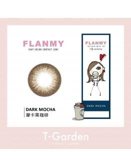 T-Garden/FLANMY/日拋10片裝/摩卡黑咖啡