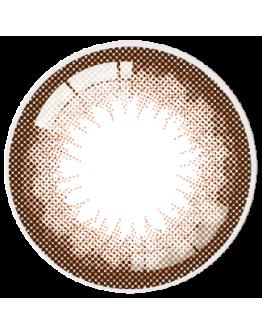 星歐/AQUA/日拋10片裝/爵士巧克力 #208